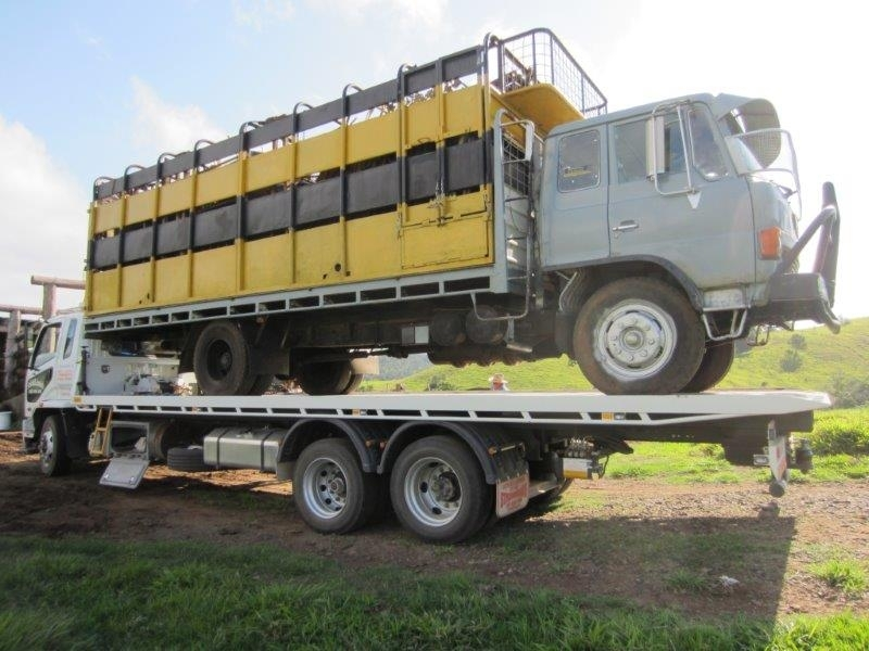 Old cattle truck transport